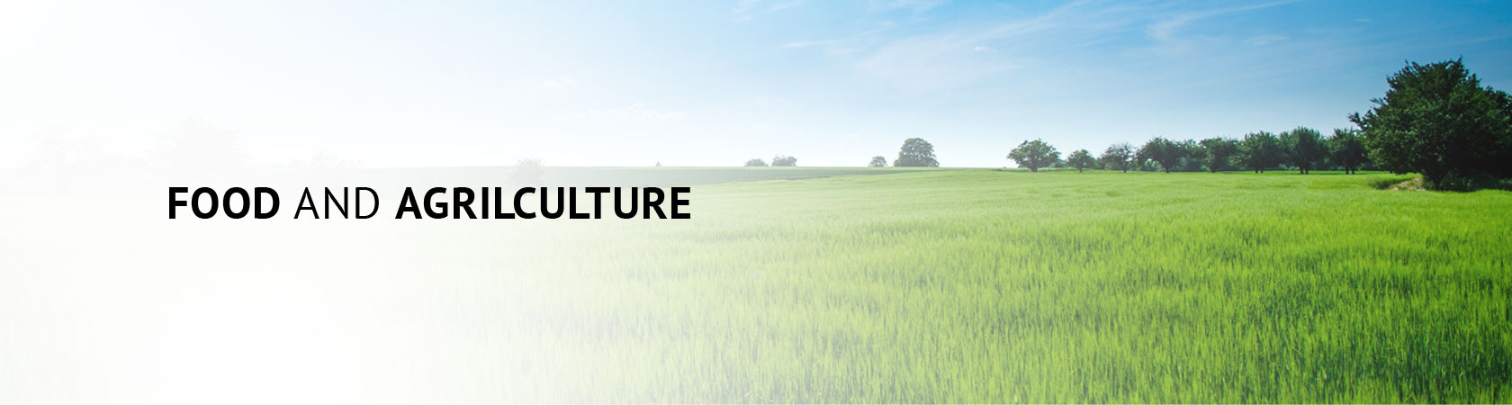 FOOD AND AGRILCULTURE