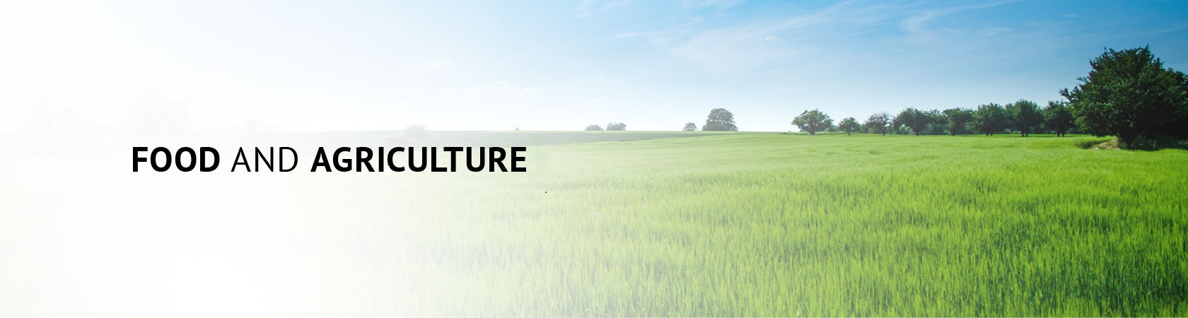 FOOD-AND-AGRILCULTURE